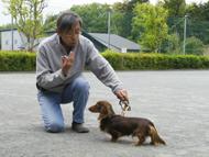 セミナー【しつけ&ハンドリング講習】