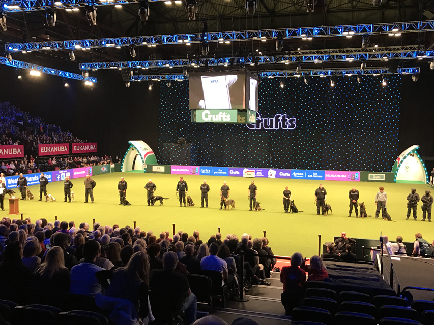 Crufts 2017/The World's Largest Dog Show