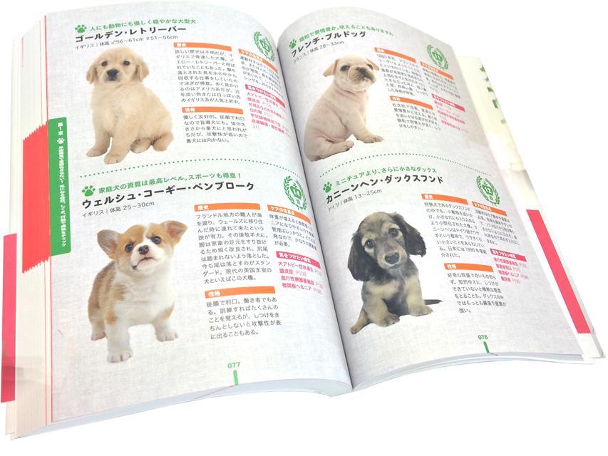 犬の家庭医学 最新版 幻冬舎