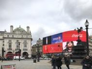 Crufts 2018 ロンドンレポート