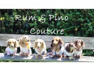 カニンヘンダックス専門のお洋服webショップ【Rum & Pino Couture.】5月1日オープン