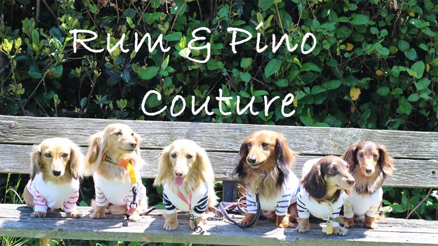 カニンヘンダックス専門のお洋服店【Rum & Pino Couture.】5月1日オープン