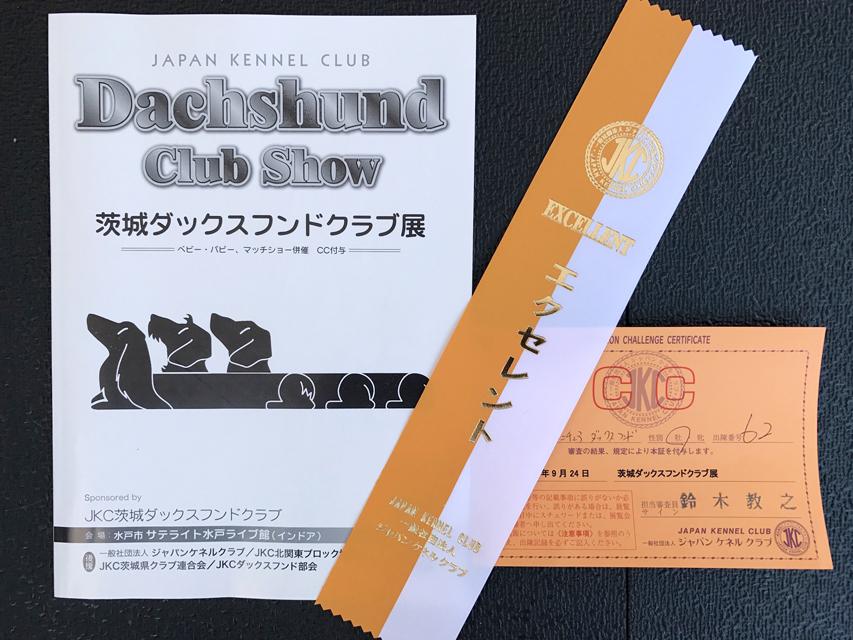 【ドッグショー】茨城ダックスフンドクラブ展 フレディ ヤングアダルト牡エクセレント