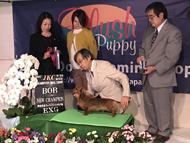 ドッグショー チャンピオン犬