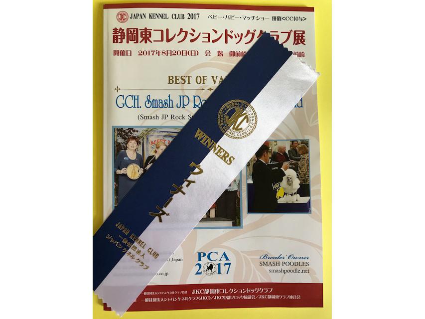 ドッグショー ミニチュアダックスフンド SAKURA OF FUJI EARTH FIELD JP 静岡東コレクションドッグクラブ展 WINNERS BITCH