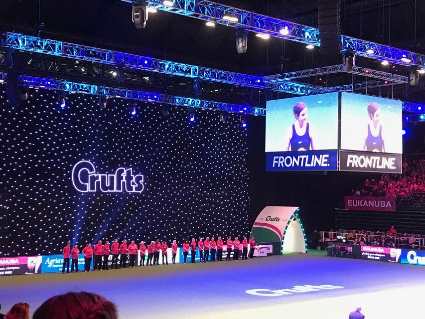 Crufts 2018 ベストインショー