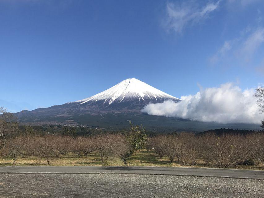当犬舎から見える富士山