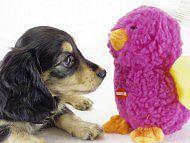 おもちゃに香りを着けるサービスをしております