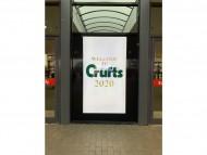 Crufts 2020 初日