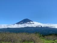 台風一過 犬舎からの今日の富士山