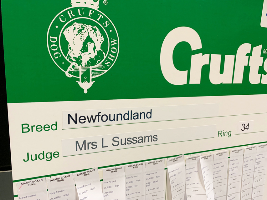 Crufts 2019 プレスルームにおじゃましました