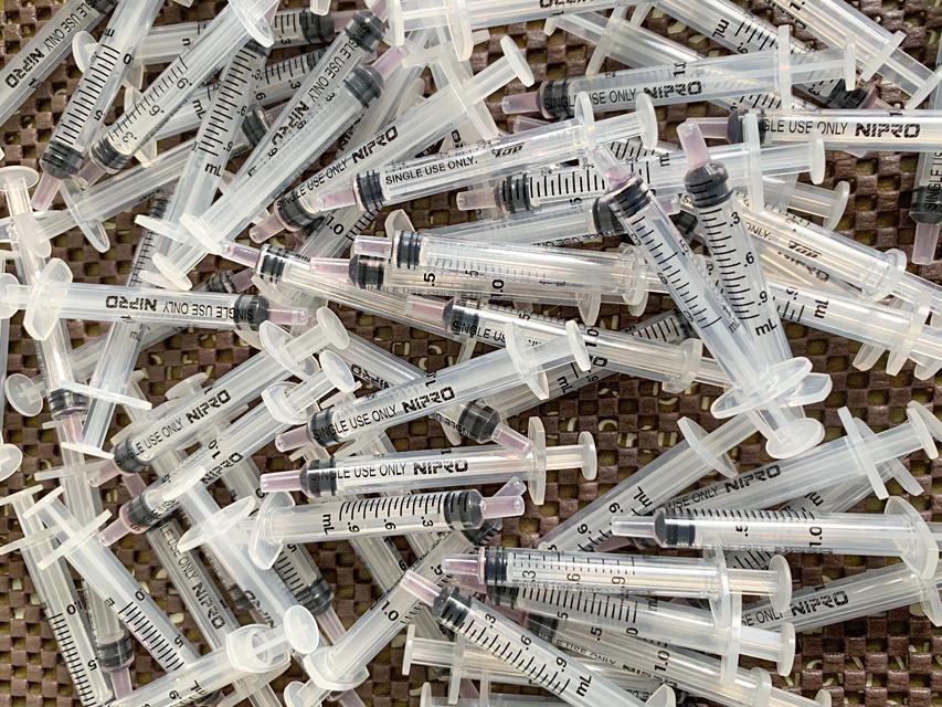 今日は狂犬病の集団ワクチン