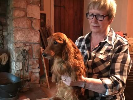 Dawn NortonとLucas 英国 HALUNKE犬舎にて