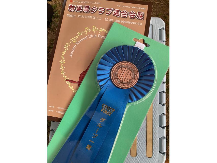 【ドッグショー】ミニチュアダックスフンド マモ〜ル ベストイングループ