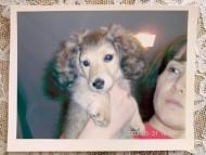 ナナの古い写真