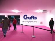 Crufts 2018 ベストインショー決定
