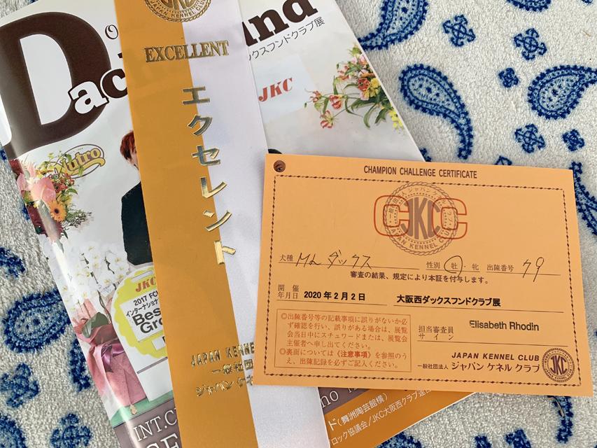 【ドッグショー】まもる CCカード獲得