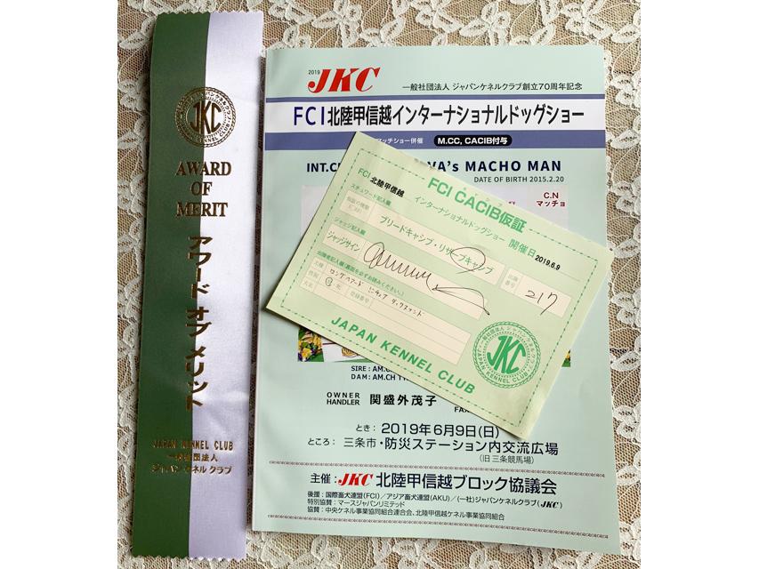 【ドッグショー】FCI北陸甲信越インターナショナルドックショー フレディ Awaed of Merit