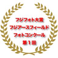 フジフォト大賞2013