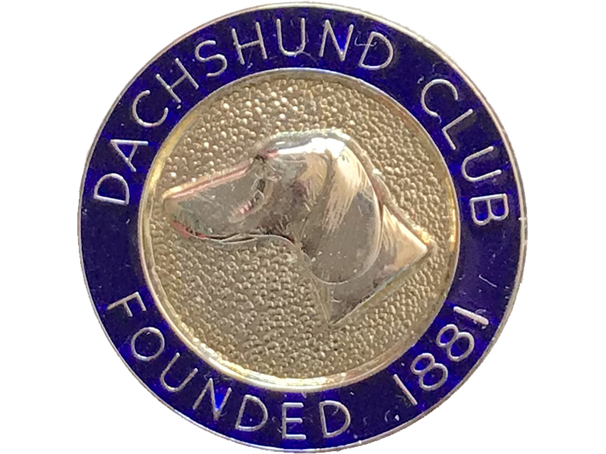 英国dachshund club