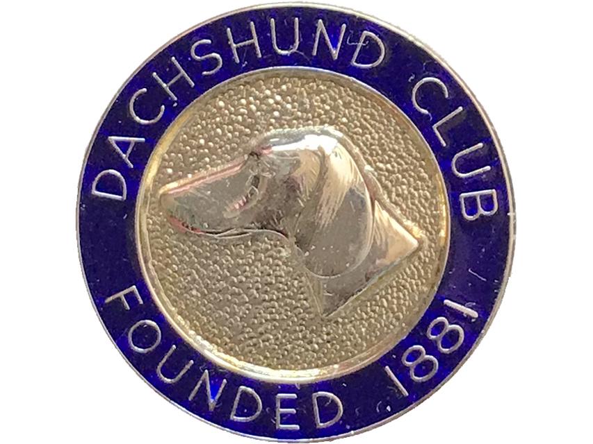 英国dachshund club